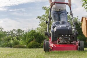 Types of lawnmower according to its energy system